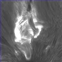 Fine structures of a flare in AR12192